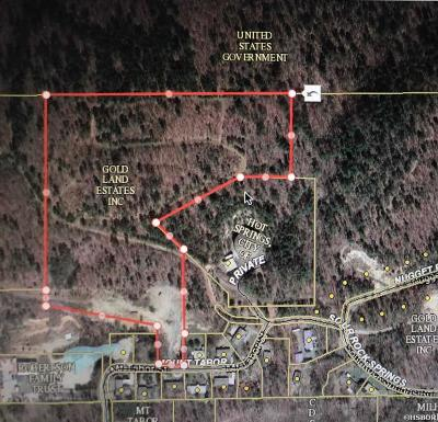 Residential Lots & Land For Sale: 217 Mt. Tabor