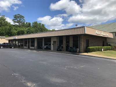 Garland County Commercial For Sale: 664 Ouachita Ave