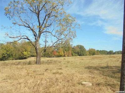 Residential Lots & Land For Sale: 850 S Hill