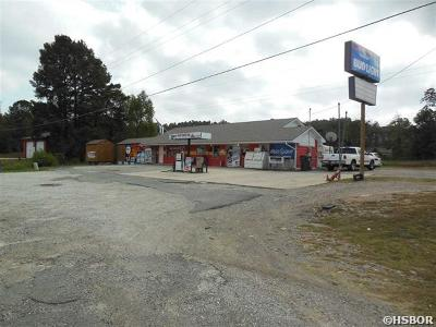 Garland County Commercial For Sale: 4080 Hwy 290