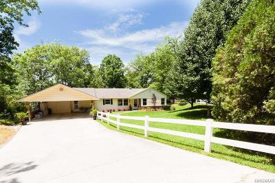 Single Family Home Active - Contingent: 132 Palisades Loop