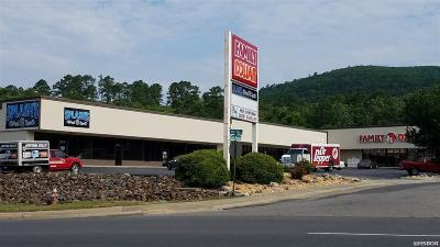Garland County Commercial Lease For Lease: 2100 Albert Pike