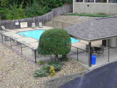 Garland County Condo/Townhouse For Sale: 225 Lookout Point #Unit C-4