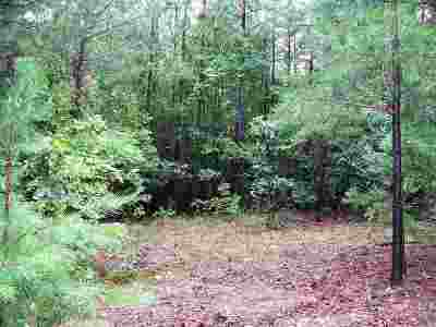 Garland County Residential Lots & Land For Sale: 23 Summer Tree Ct