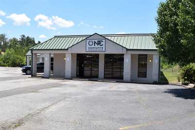 Garland County Commercial Active - Extended: 2223 Albert Pike