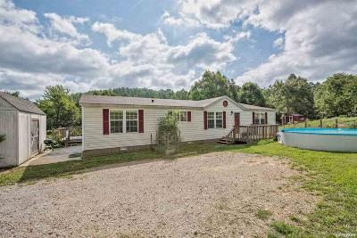 Single Family Home For Sale: 950 E Strawberry Rd