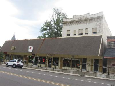 Garland County Commercial For Sale: 759 Park Avenue