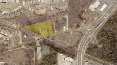 Garland County Commercial For Sale: 212 Twin Points Road