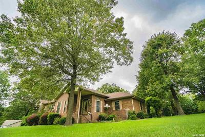 Hot Springs Single Family Home For Sale: 291 Mountain Meadow Rd