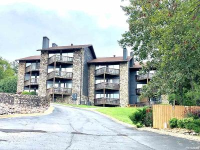Garland County Condo/Townhouse For Sale: 203 Stearns Point #F 4