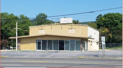 Garland County Commercial For Sale: 1420 Albert Pike