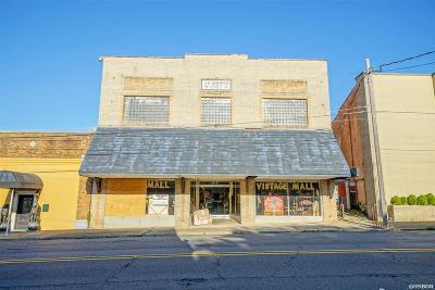 Garland County Commercial For Sale: 1015 Central Avenue