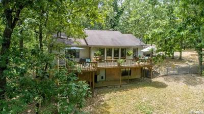 Garland County Single Family Home For Sale: 6349 Albert Pike