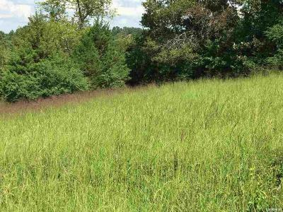 Garland County Residential Lots & Land For Sale: Lot 4 Damian Ct