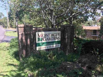 Hot Springs Condo/Townhouse Active - Contingent: 1131 Twin Points Rd #D
