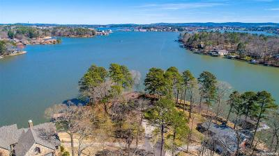 Hot Springs AR Single Family Home For Sale: $950,000