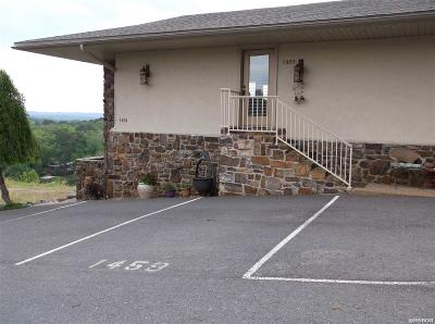 Hot Springs Condo/Townhouse Active - Contingent: 1459 Lodge Mountain Dr