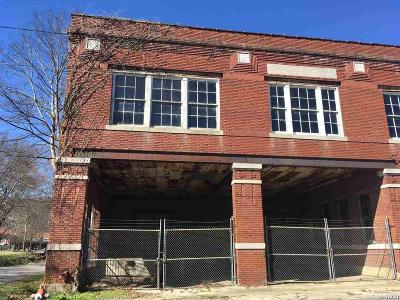 Garland County Commercial For Sale: 150 Creek St