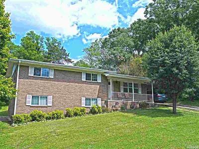 Hot Springs AR Single Family Home For Sale: $154,900