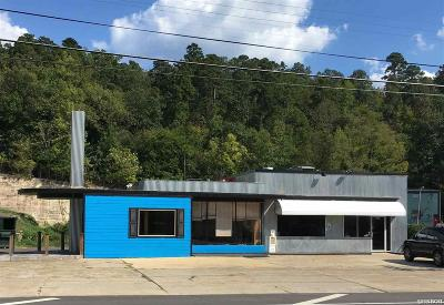 Garland County Commercial For Sale: 250 Park Ave