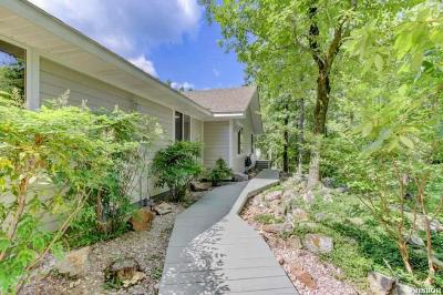 Hot Springs Single Family Home For Sale: 401 Peaceful Valley Rd
