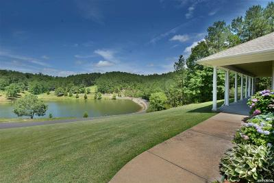 Hot Springs Single Family Home For Sale: 229 Summit Ridge Cir