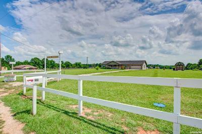 Bismarck Single Family Home For Sale: 201 Logan Ln
