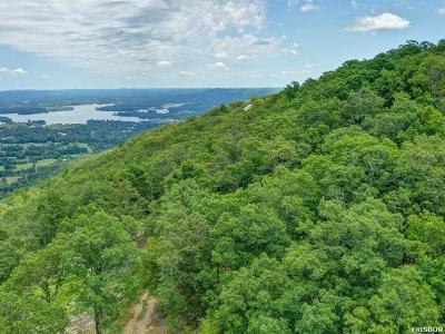 Hot Springs AR Residential Lots & Land For Sale: $89,000