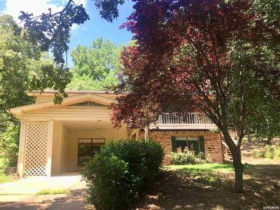 Hot Springs Single Family Home For Sale: 229 Holly Hill Drive