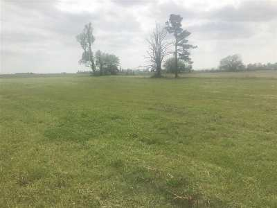 Residential Lots & Land For Sale: Lot 4 Reinhart