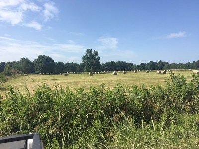 Farm For Sale: 15.80 Acres Tract 5, Cr 952