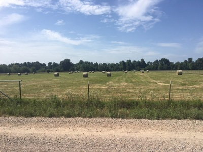 Farm For Sale: 11.49 Acres Tract 2 Cr 952