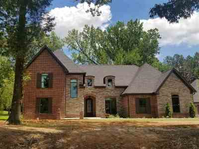 Craighead County Single Family Home For Sale: 123 Cr 409