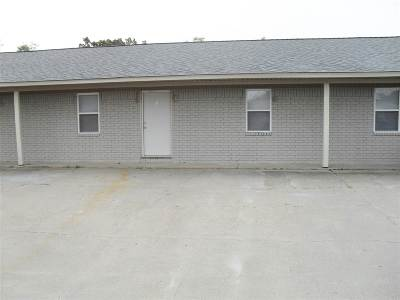 Craighead County Multi Family Home For Sale: 5308 Apt Dr.
