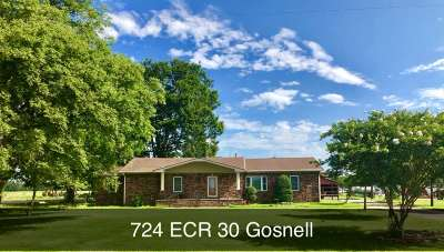 Single Family Home For Sale: 724 East County Road 30