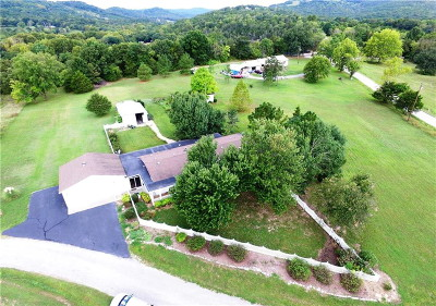 Eureka Springs Single Family Home For Sale: 116 Feather Creek Road