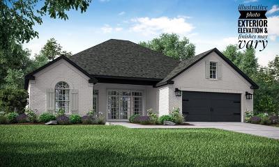 Fayetteville Single Family Home For Sale: 4828 W Townbridge Drive