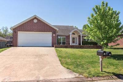 Fayetteville Single Family Home For Sale: 373 W Tanner Drive