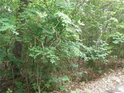 Residential Lots & Land For Sale: Stachir LN