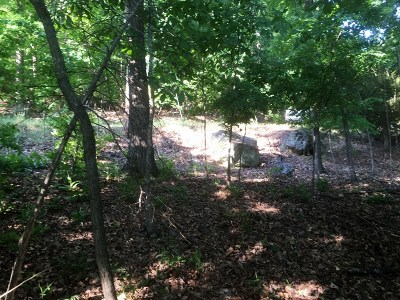 Residential Lots & Land For Sale: Lot 77 Dogwood DR