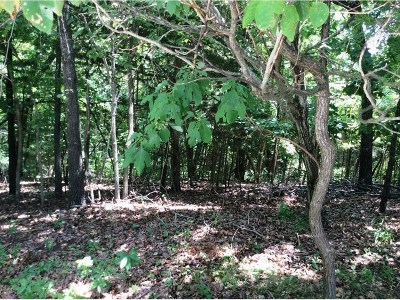 Garfield Residential Lots & Land For Sale: Lot 27 Stoney Ridge