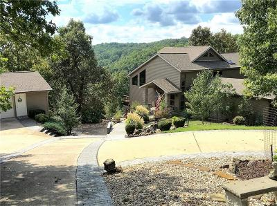 Eureka Springs Single Family Home For Sale: 70 Panorama Shores DR