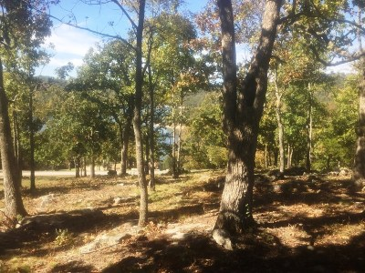 Residential Lots & Land For Sale: Lot 25 Ozark DR