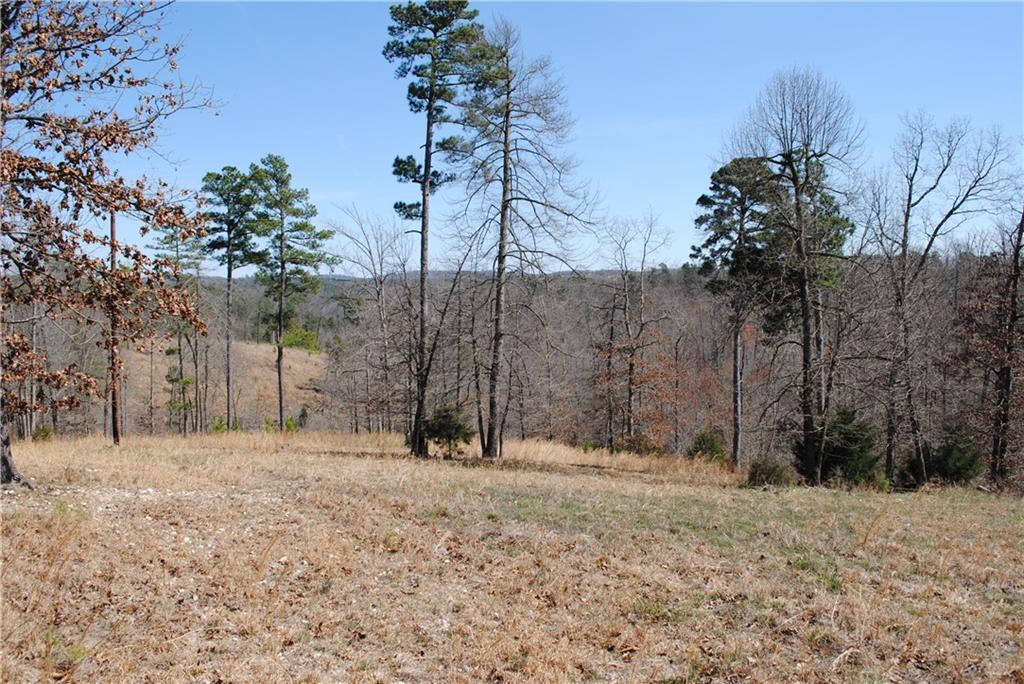 20 acres in Rogers for $124,999