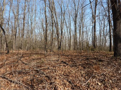 Residential Lots & Land For Sale: Steedham LN
