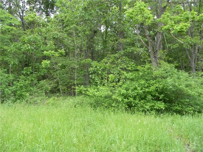 Residential Lots & Land For Sale: Annabell LN