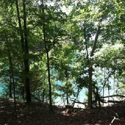 Eureka Springs Residential Lots & Land For Sale: Beth