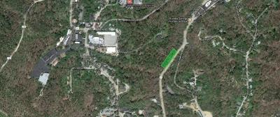 Eureka Springs Residential Lots & Land For Sale: S Main ST