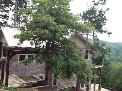 Eureka Springs Single Family Home For Sale: 20 Corley LOOP