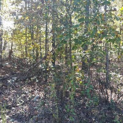Residential Lots & Land For Sale: Stoneykirk CIR